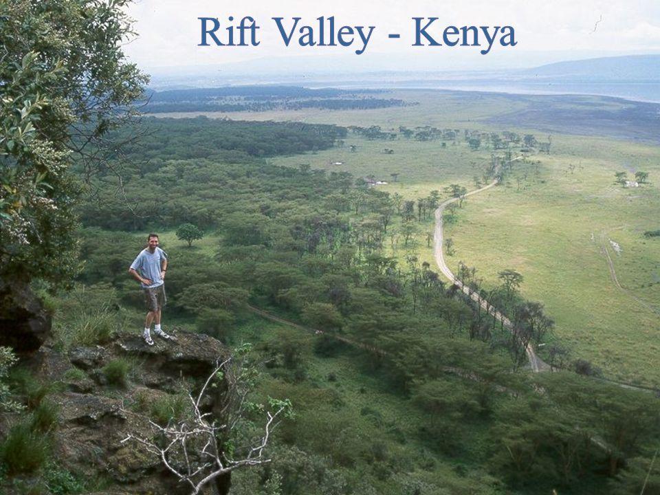 Rift Valleys Often have long, narrow lakes