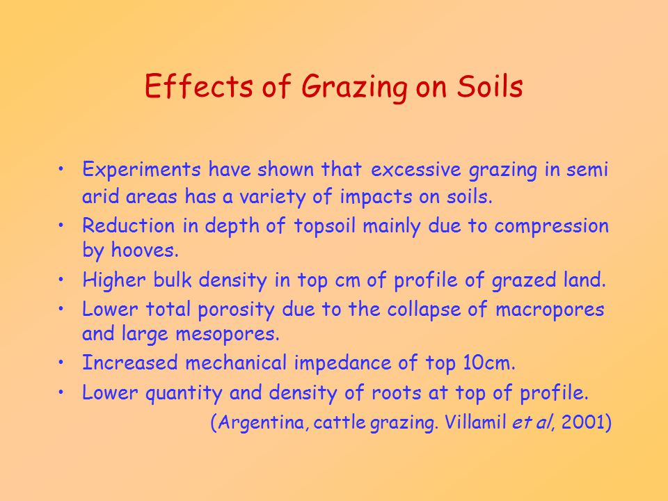 Effects of Grazing on Soils Experiments have shown that excessive grazing in semi arid areas has a variety of impacts on soils. Reduction in depth of