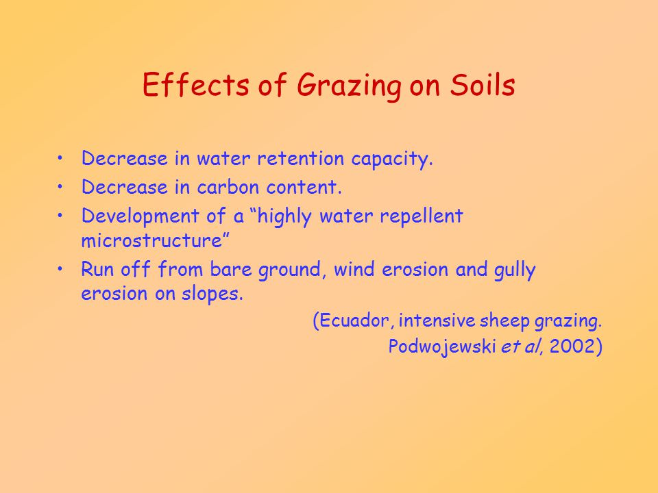 """Effects of Grazing on Soils Decrease in water retention capacity. Decrease in carbon content. Development of a """"highly water repellent microstructure"""""""