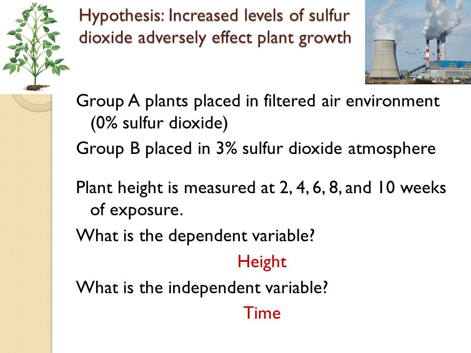 Hypothesis: Increased levels of sulfur dioxide adversely effect plant growth Group A placed in filtered air environment (0% sulfur dioxide) Group B placed in 0.1% sulfur dioxide atmosphere Group C placed in 0.5% sulfur dioxide atmosphere Group D placed in 1.0% sulfur dioxide atmosphere Group E placed in 10.0% sulfur dioxide atmosphere Plant height is measured at 6 weeks of exposure.