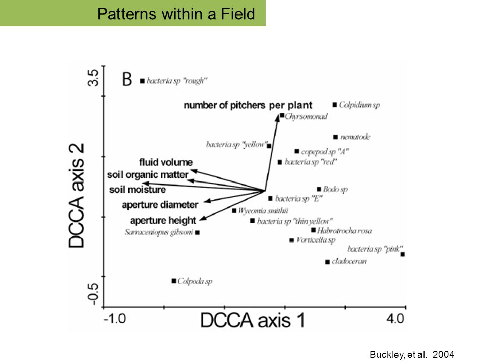 Buckley, et al. 2004 Community Patterns within a Field