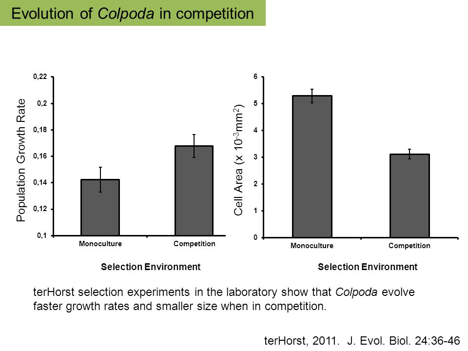 terHorst selection experiments in the laboratory show that Colpoda evolve faster growth rates and smaller size when in competition.