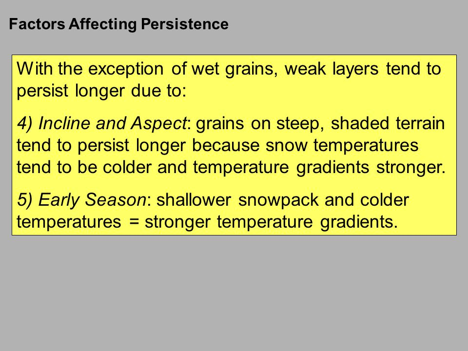 With the exception of wet grains, weak layers tend to persist longer due to: 4) Incline and Aspect: grains on steep, shaded terrain tend to persist longer because snow temperatures tend to be colder and temperature gradients stronger.