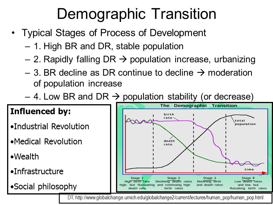 Demographic Transition Typical Stages of Process of Development –1. High BR and DR, stable population –2. Rapidly falling DR  population increase, ur