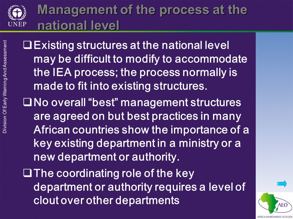 Division Of Early Warning And Assessment Management of the process at the national level  Existing structures at the national level may be difficult to modify to accommodate the IEA process; the process normally is made to fit into existing structures.