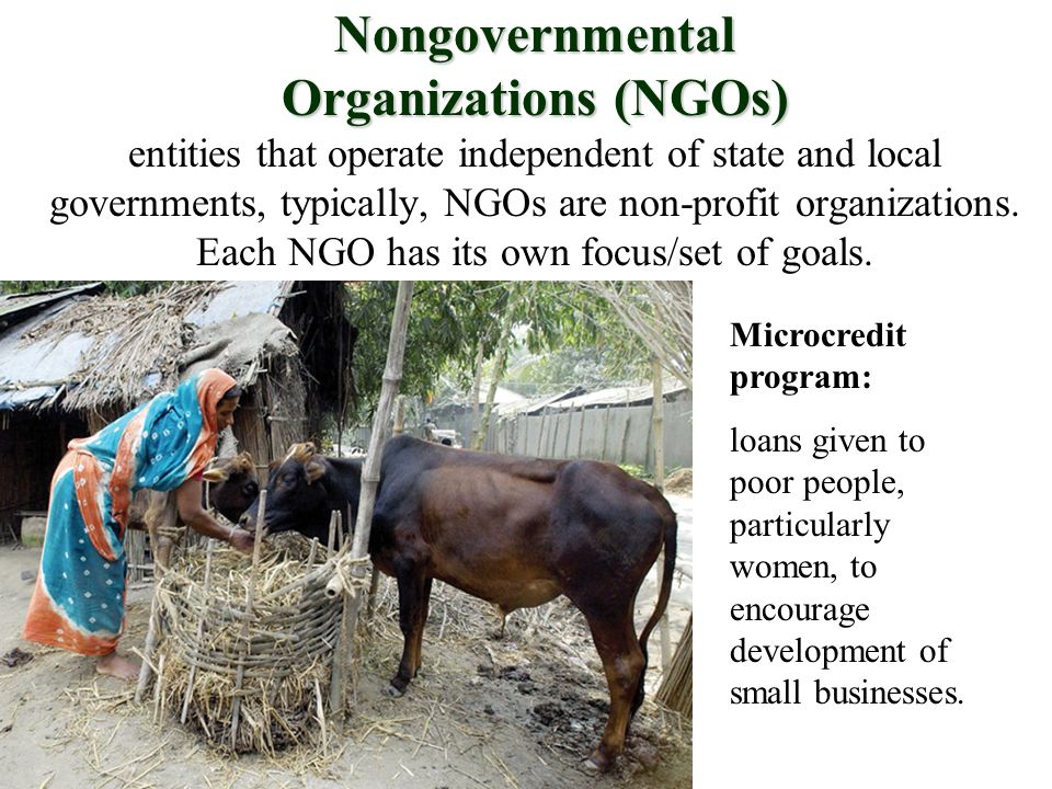 Nongovernmental Organizations (NGOs) Nongovernmental Organizations (NGOs) entities that operate independent of state and local governments, typically, NGOs are non-profit organizations.