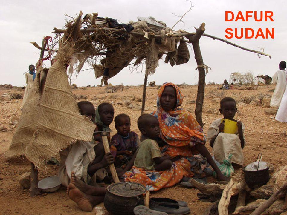 Slide 3: Shelter 1 DAFUR SUDAN