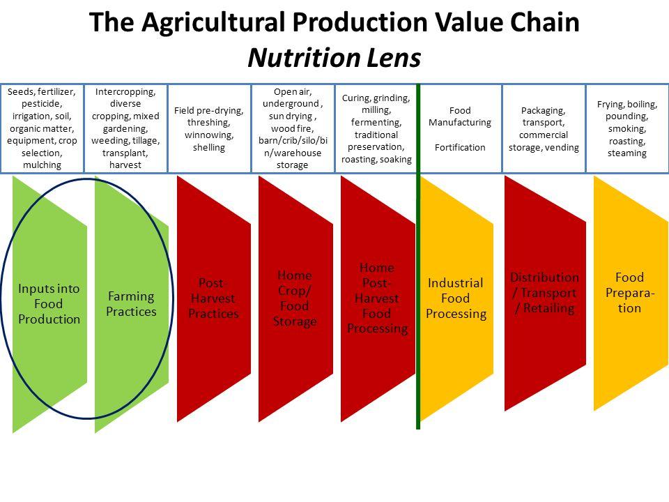 Inputs into Food Production Farming Practices Post- Harvest Practices Home Crop/ Food Storage Home Post- Harvest Food Processing Industrial Food Processing Distribution / Transport / Retailing Food Prepara- tion The Agricultural Production Value Chain Nutrition Lens Seeds, fertilizer, pesticide, irrigation, soil, organic matter, equipment, crop selection, mulching Intercropping, diverse cropping, mixed gardening, weeding, tillage, transplant, harvest Field pre-drying, threshing, winnowing, shelling Open air, underground, sun drying, wood fire, barn/crib/silo/bi n/warehouse storage Curing, grinding, milling, fermenting, traditional preservation, roasting, soaking Food Manufacturing Fortification Packaging, transport, commercial storage, vending Frying, boiling, pounding, smoking, roasting, steaming
