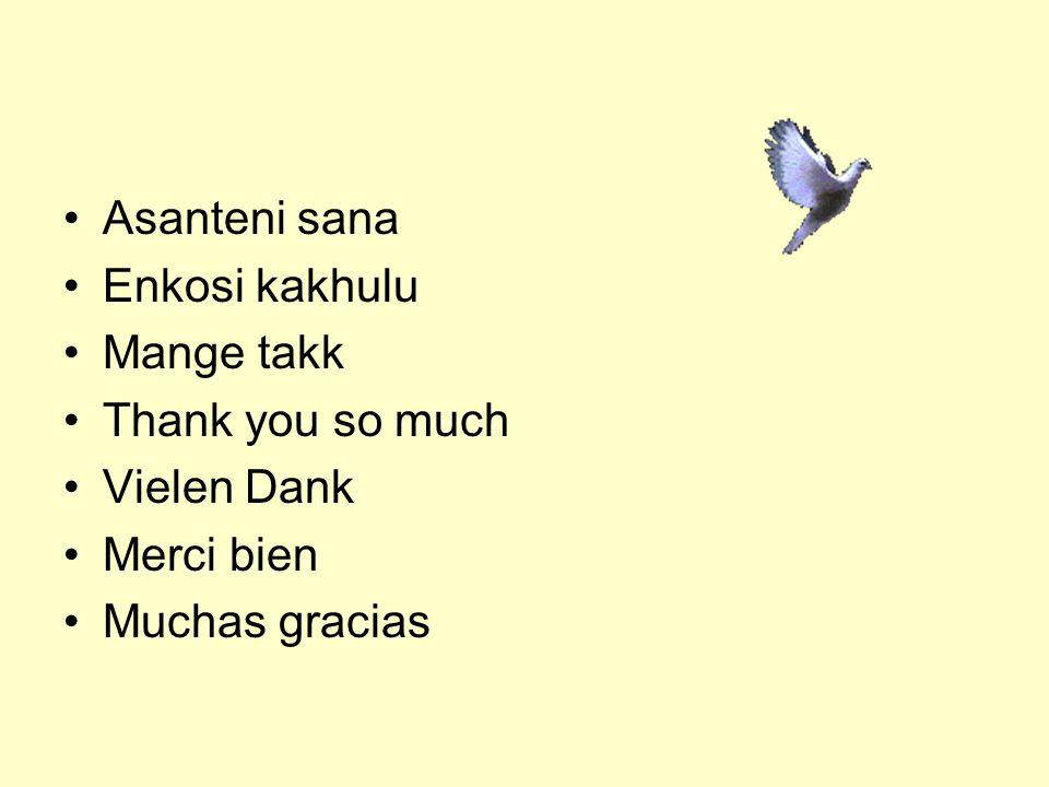 Asanteni sana Enkosi kakhulu Mange takk Thank you so much Vielen Dank Merci bien Muchas gracias