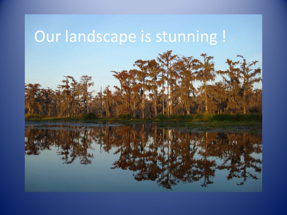 Our landscape is stunning !