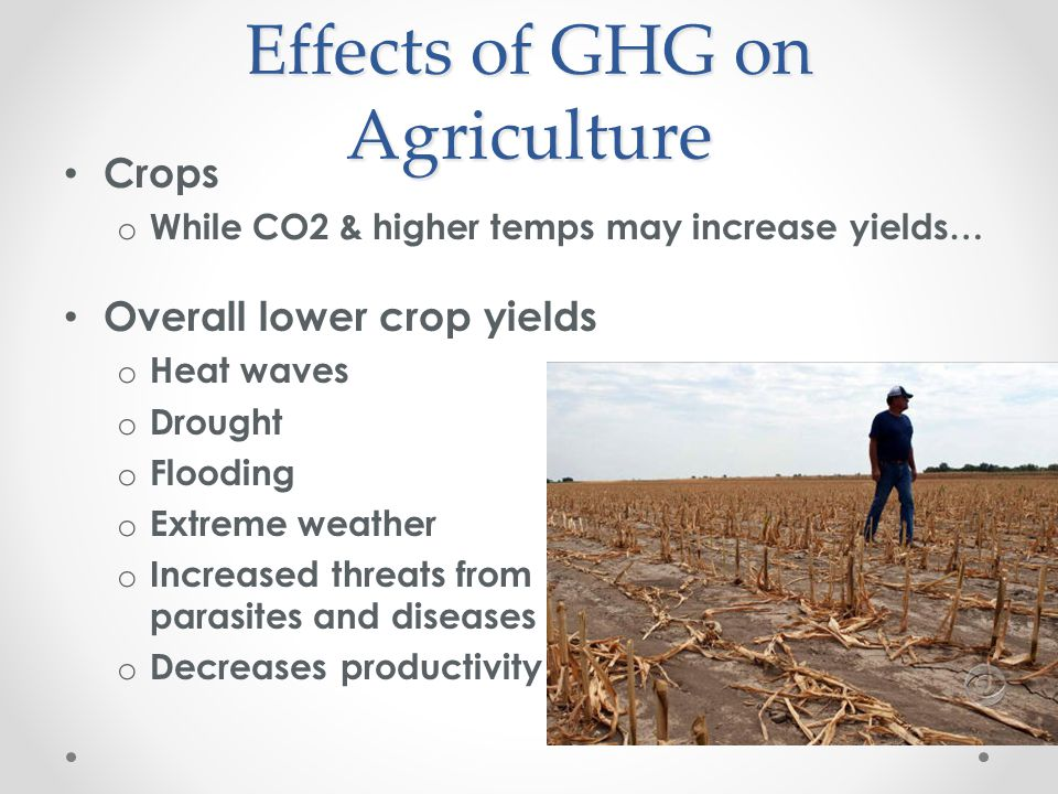 Vicious Circle Global warming impedes food production leading to poorer growing conditions.