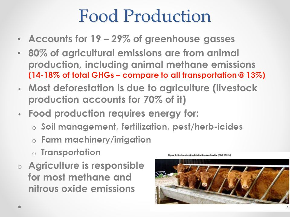 Other Areas of Food Emissions 24% - Packaging and Processing o 90% of food eaten is processed 12% - Transportation o Food Miles – Railway 10X more efficient than trucking.