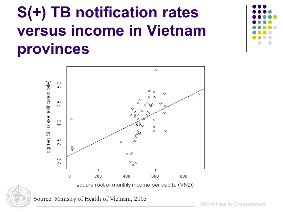 World Health Organization S(+) TB notification rates versus income in Vietnam provinces Source: Ministry of Health of Vietnam, 2003