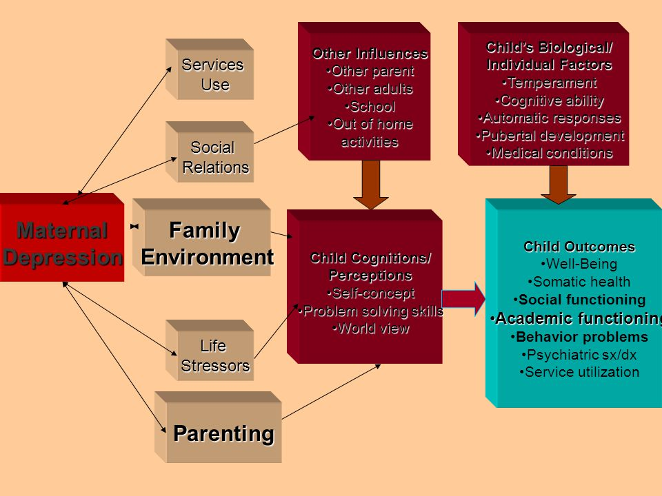 Other Influences Other parentOther parent Other adultsOther adults SchoolSchool Out of homeOut of homeactivities MaternalDepression ServicesUse Social