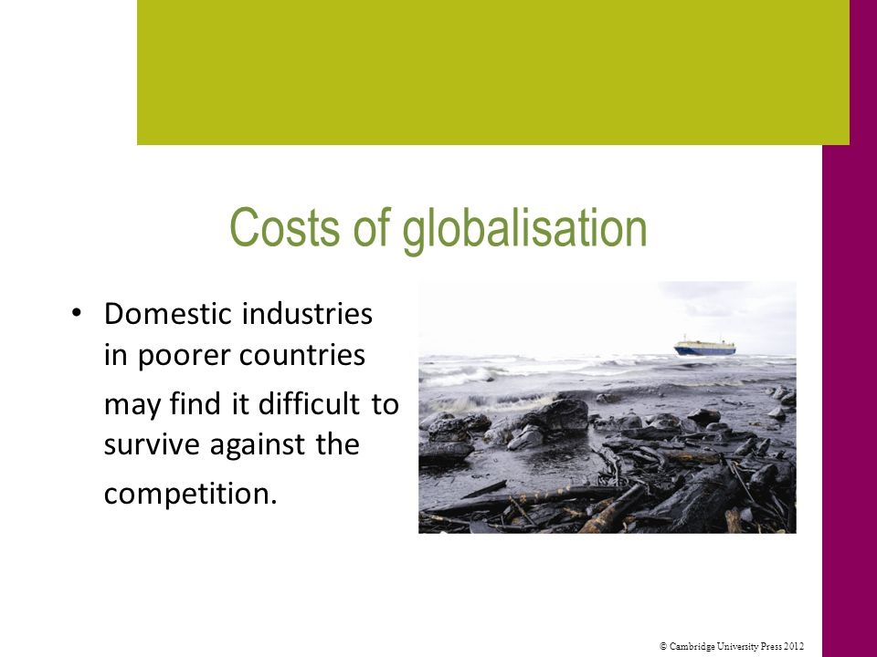 © Cambridge University Press 2012 Costs of globalisation (cont.) Trade in goods with 'cultural content' may be at the expense of local cultures and traditions.