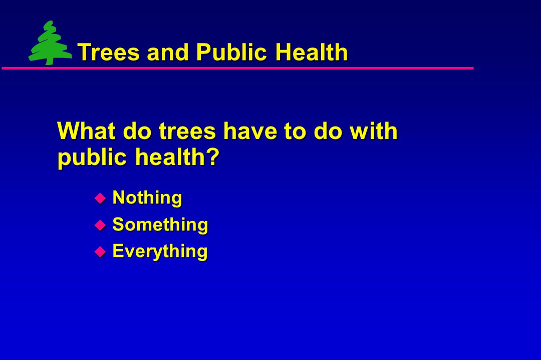 What do trees have to do with public health?  Nothing  Something  Everything