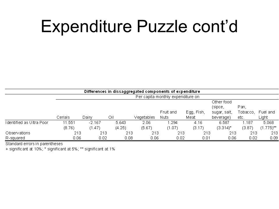 Expenditure Puzzle cont'd