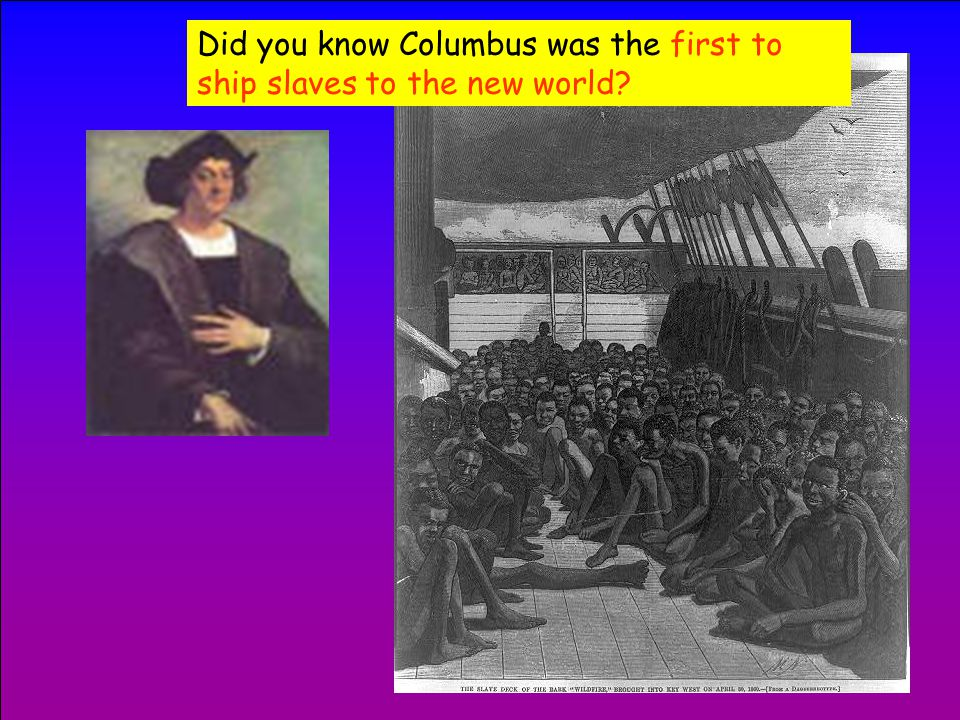By the way, did you know that the natives Columbus brought back to Spain were taken to demonstrate their potential as SLAVES?