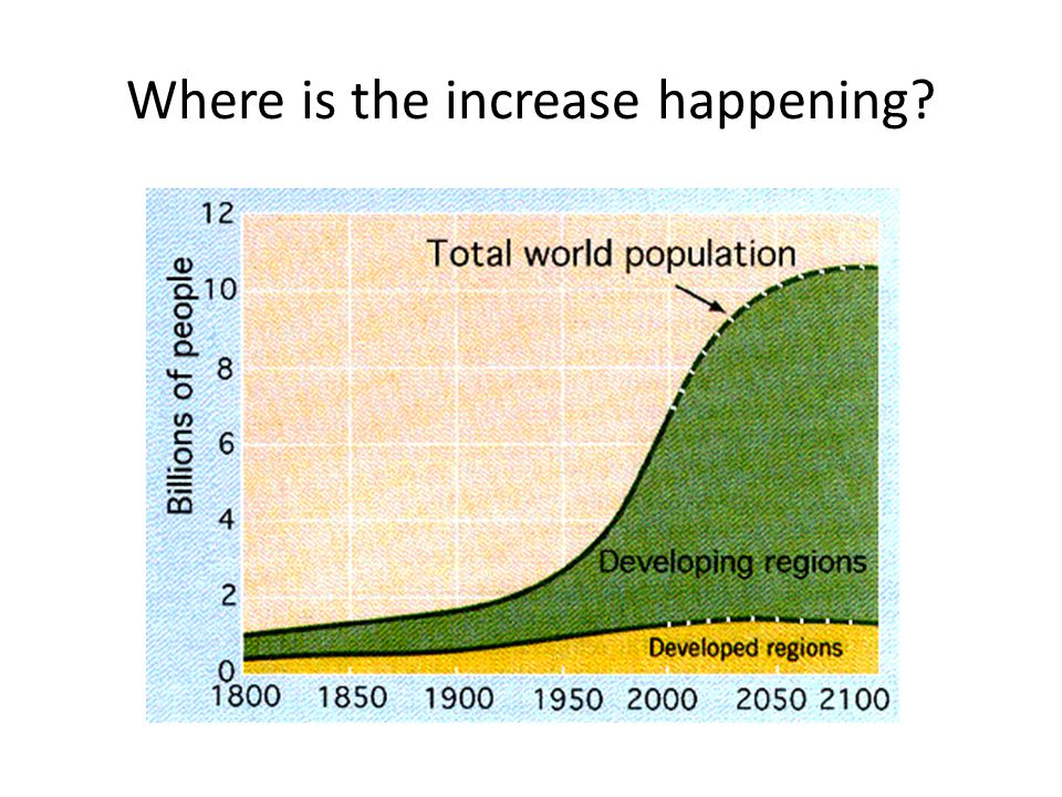 The Population Cycle