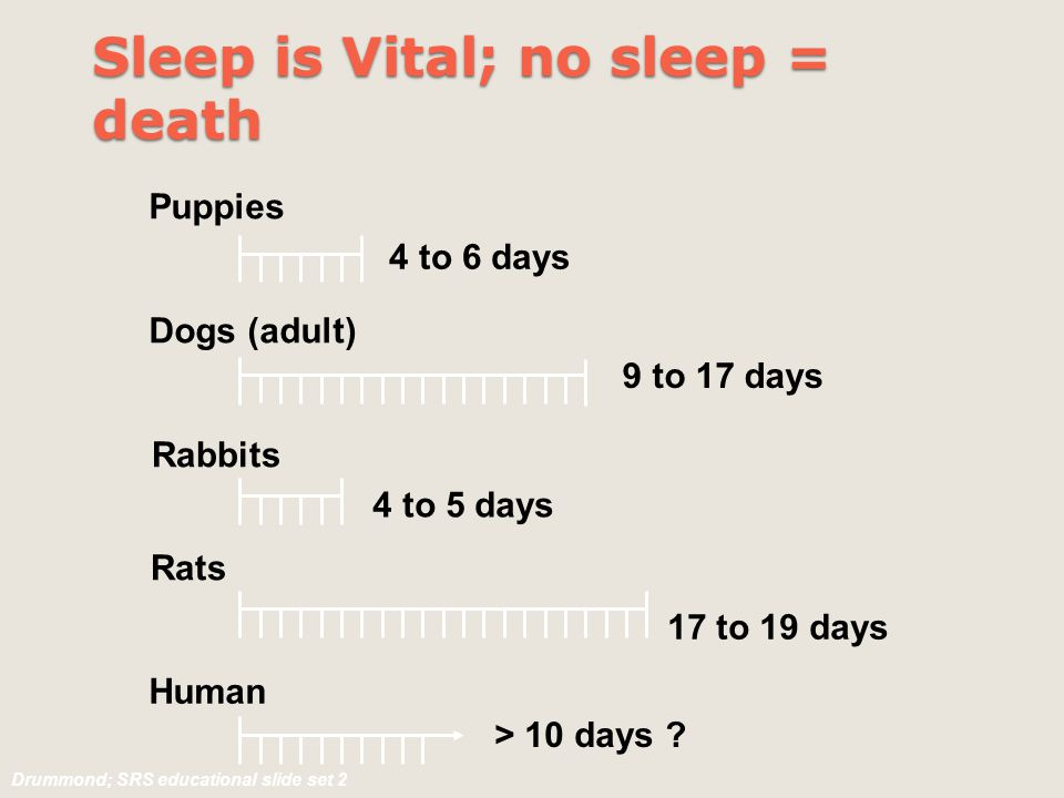 Human 4 to 6 days 9 to 17 days 4 to 5 days 17 to 19 days > 10 days ? Puppies Dogs (adult) Rabbits Rats Sleep is Vital; no sleep = death Drummond; SRS