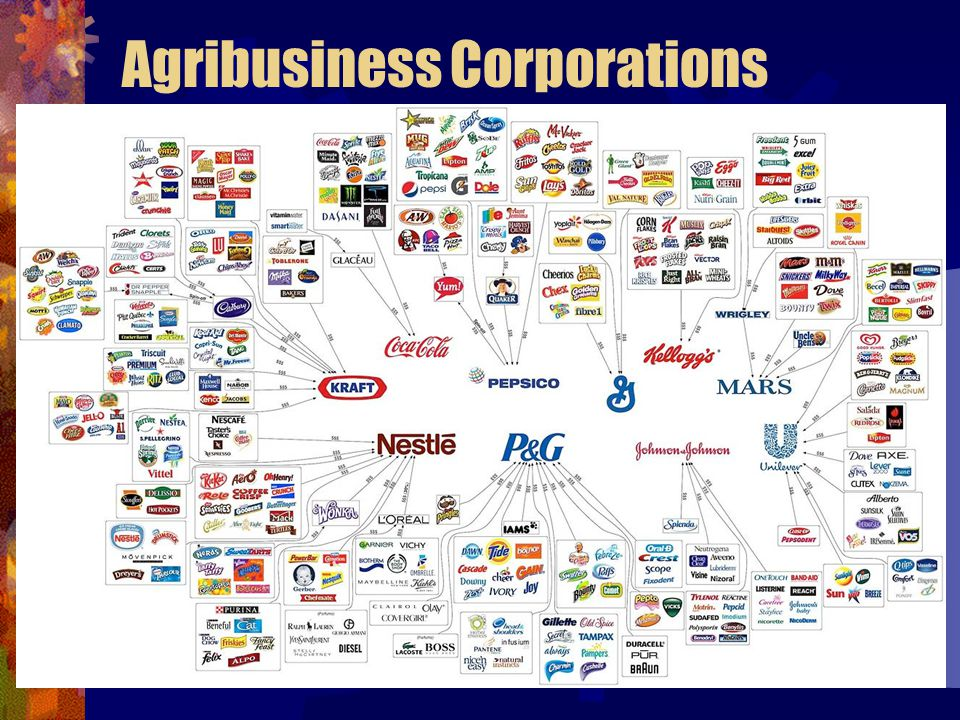 Agribusiness Corporations