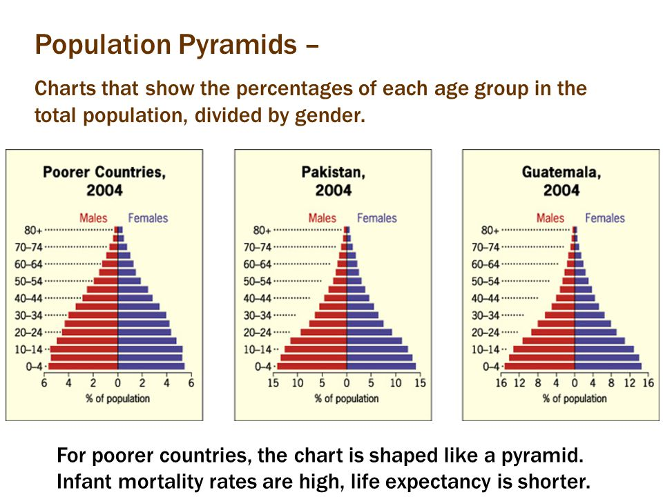 Population Pyramids – Charts that show the percentages of each age group in the total population, divided by gender. For poorer countries, the chart i