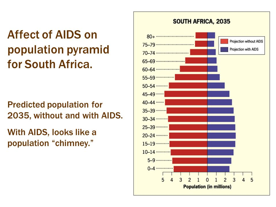 "Affect of AIDS on population pyramid for South Africa. Predicted population for 2035, without and with AIDS. With AIDS, looks like a population ""chimn"