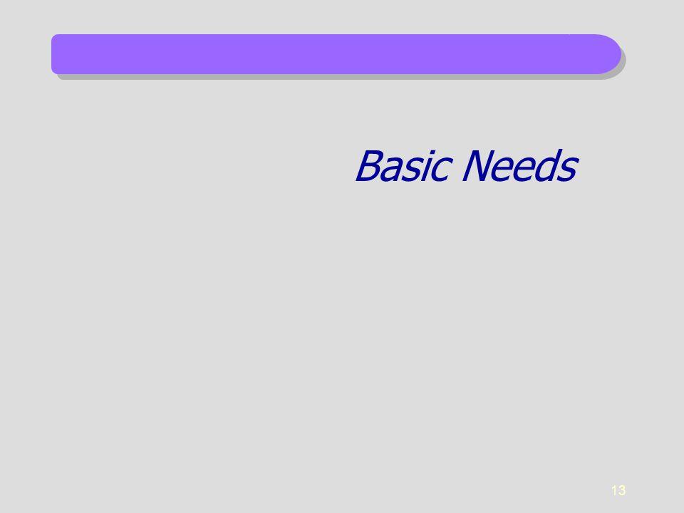 13 Basic Needs