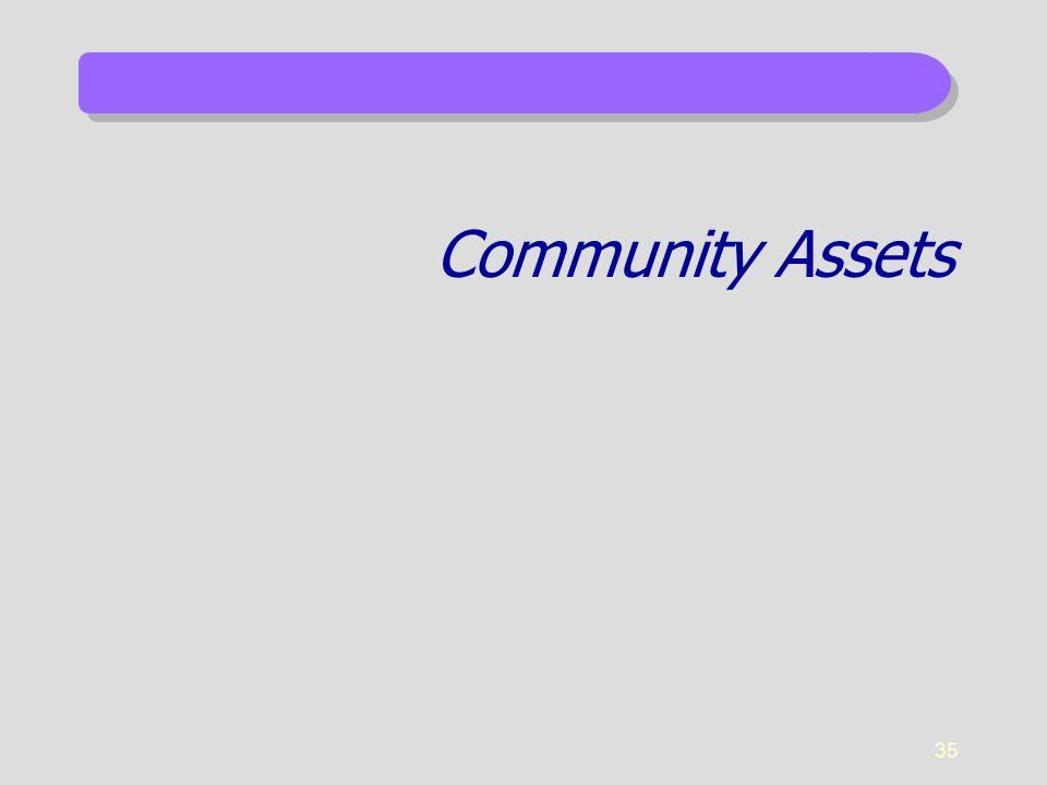 35 Community Assets