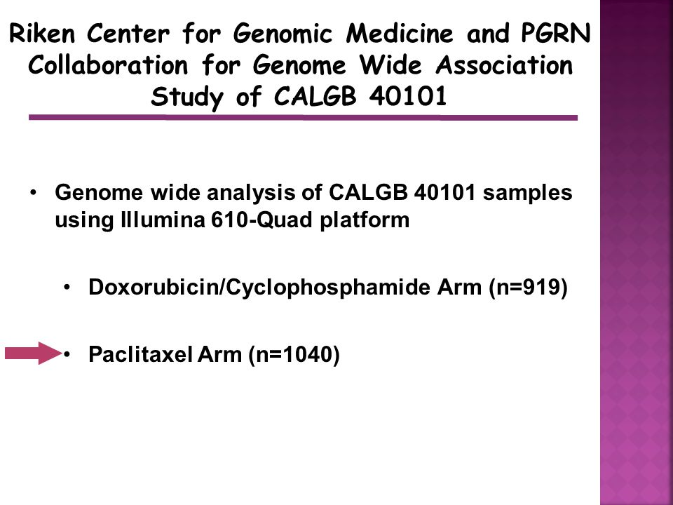 Riken Center for Genomic Medicine and PGRN Collaboration for Genome Wide Association Study of CALGB 40101 Genome wide analysis of CALGB 40101 samples using Illumina 610-Quad platform Doxorubicin/Cyclophosphamide Arm (n=919) Paclitaxel Arm (n=1040)