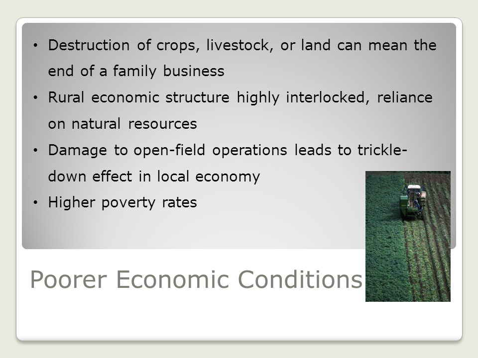 Poorer Economic Conditions Destruction of crops, livestock, or land can mean the end of a family business Rural economic structure highly interlocked, reliance on natural resources Damage to open-field operations leads to trickle- down effect in local economy Higher poverty rates