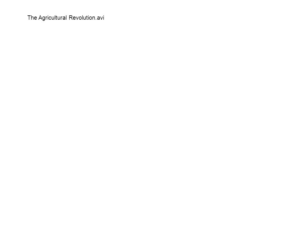 The Agricultural Revolution.avi