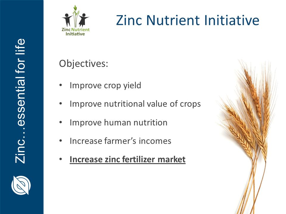 Zinc…essential for life Zinc Nutrient Initiative 10 Objectives: Improve crop yield Improve nutritional value of crops Improve human nutrition Increase