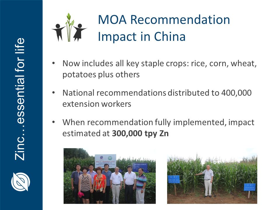 Zinc…essential for life Now includes all key staple crops: rice, corn, wheat, potatoes plus others National recommendations distributed to 400,000 extension workers When recommendation fully implemented, impact estimated at 300,000 tpy Zn MOA Recommendation Impact in China