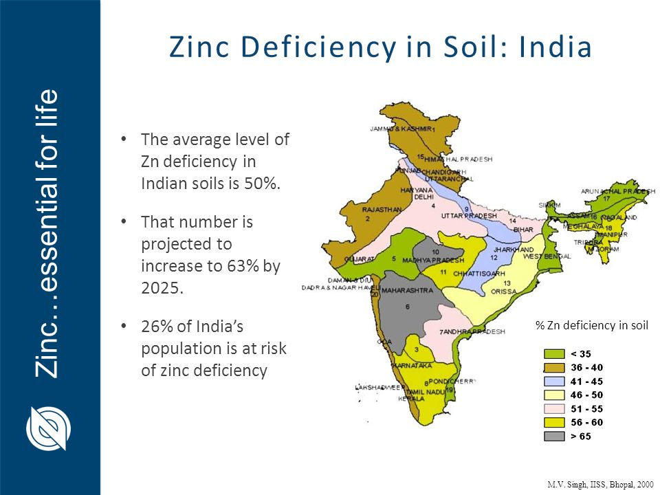 Zinc…essential for life % Zn deficiency in soil Zinc Deficiency in Soil: India The average level of Zn deficiency in Indian soils is 50%. That number