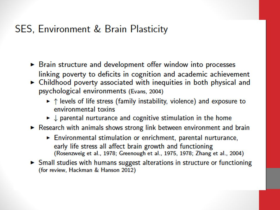 Selecting brain regions of interest Select regions of interest based on two criteria: (1) those that have a pro- tracted period of post-natal development and, therefore, are more likely to be vulnerable to environmental experience (2) those thought to be critical for sustained attention, plan- ning, and cognitive flexibility, all of which may have implications for learning and academic functioning.