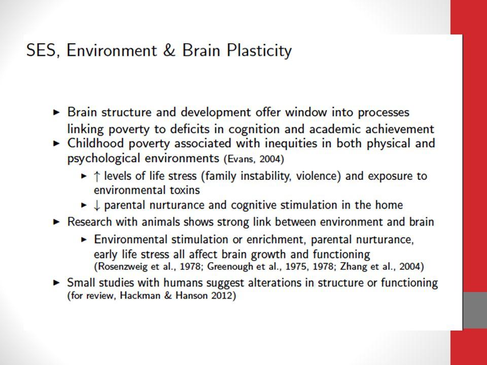 SES, Anatomical Brain Development and Verbal Achievement.