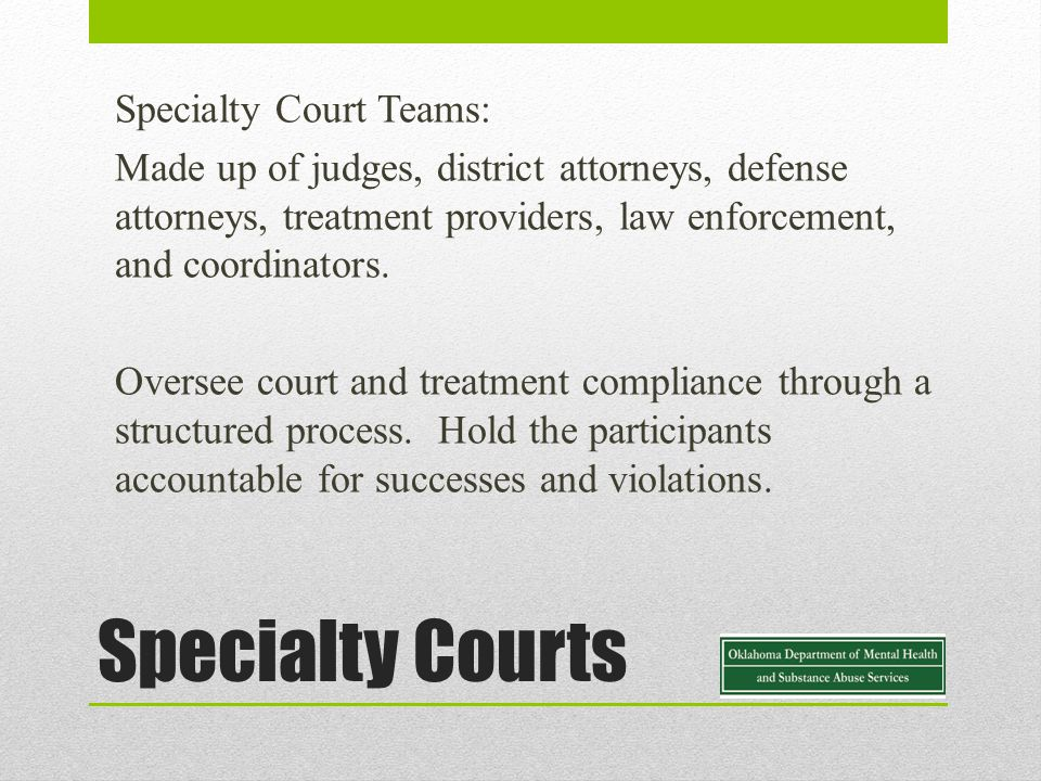 Specialty Courts Specialty Court Teams: Made up of judges, district attorneys, defense attorneys, treatment providers, law enforcement, and coordinators.