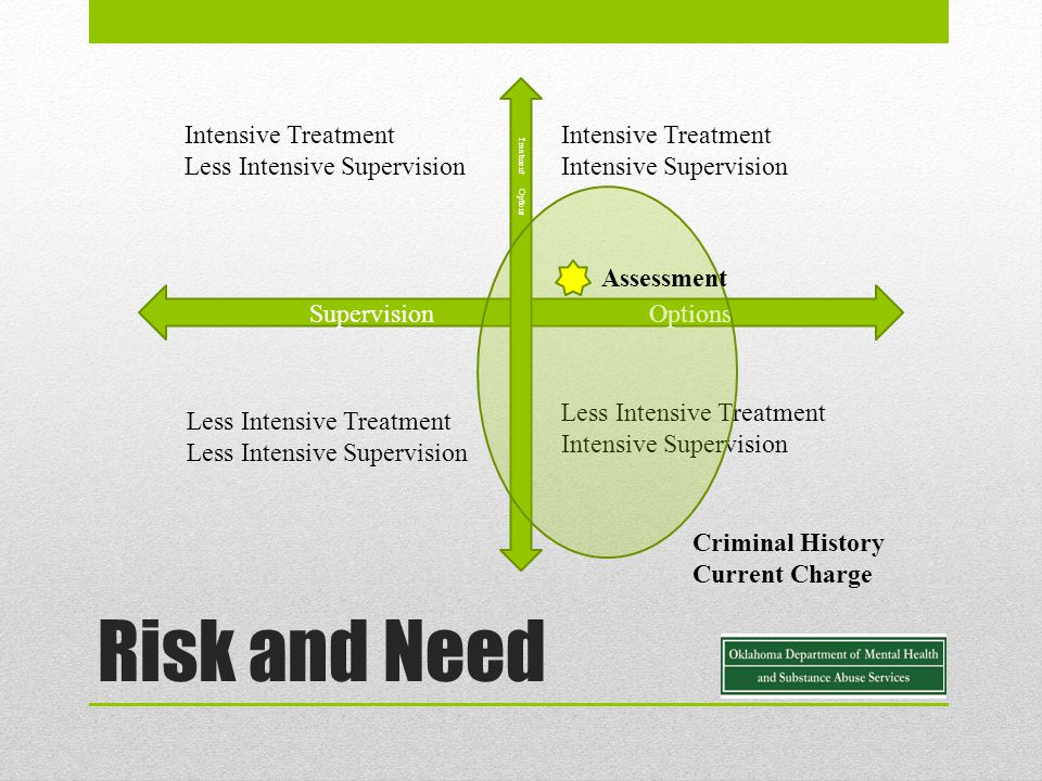 Risk and Need Supervision Options Treatment Options Intensive Treatment Less Intensive Supervision Intensive Treatment Intensive Supervision Less Intensive Treatment Less Intensive Supervision Less Intensive Treatment Intensive Supervision Criminal History Current Charge Assessment