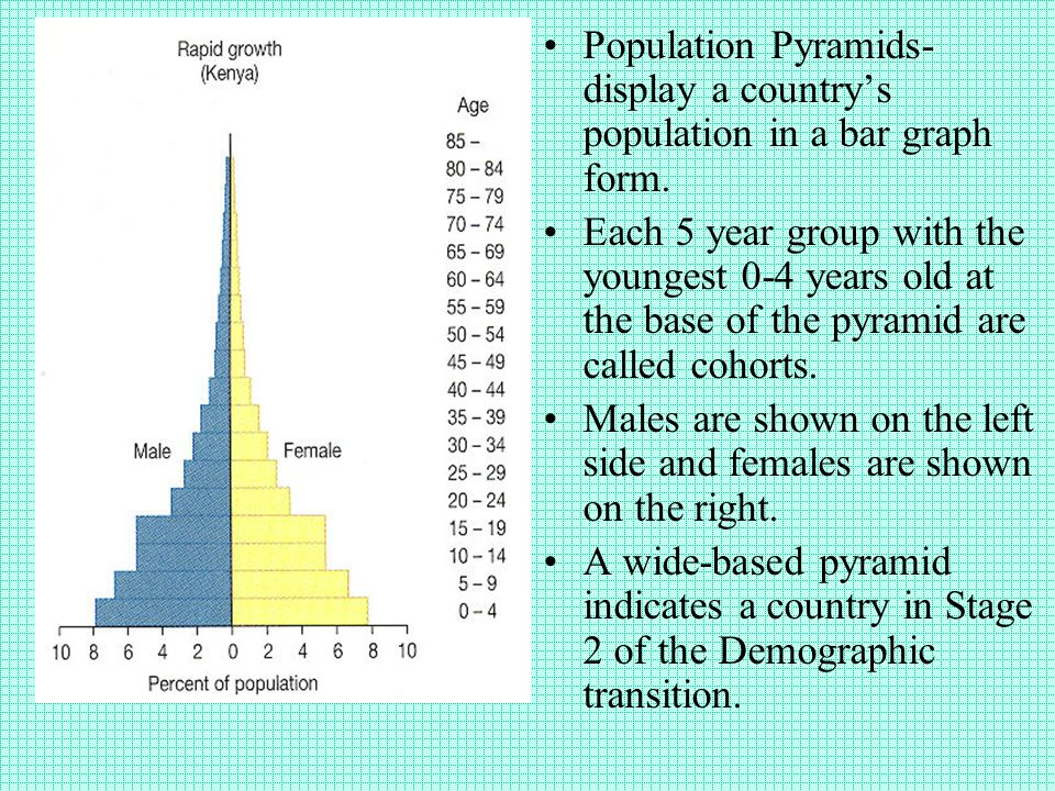 1995 Population Pyramids reflect the economic prosperity of Western Europe and the less developed countries of Sub-Saharan Africa.