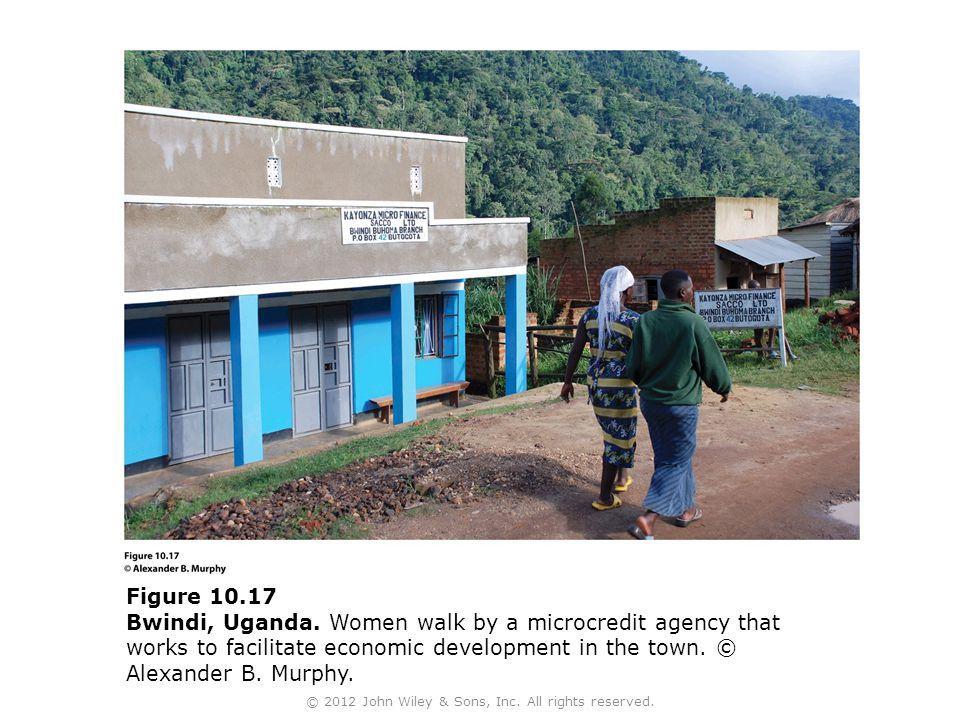 Figure 10.17 Bwindi, Uganda.