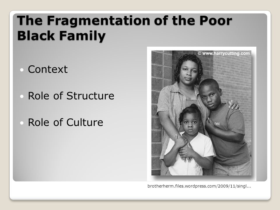 The Fragmentation of the Poor Black Family Context Role of Structure Role of Culture brotherherm.files.wordpress.com/2009/11/singl...