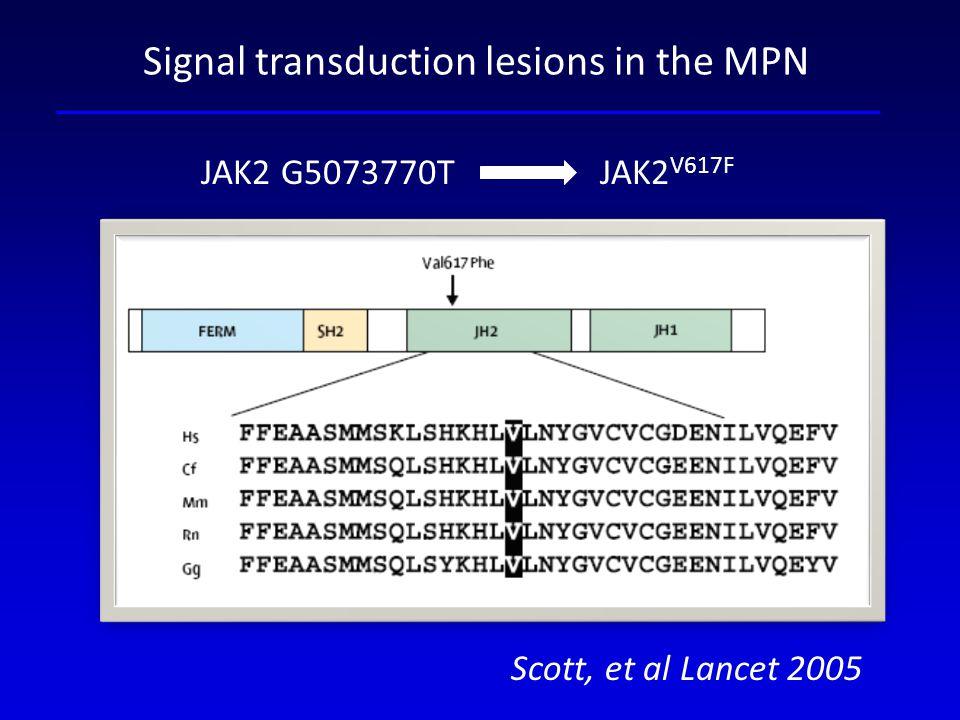 JAK2 G5073770T JAK2 V617F Scott, et al Lancet 2005 Signal transduction lesions in the MPN