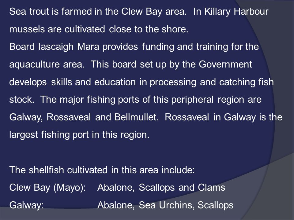 Sea trout is farmed in the Clew Bay area. In Killary Harbour mussels are cultivated close to the shore. Board Iascaigh Mara provides funding and train