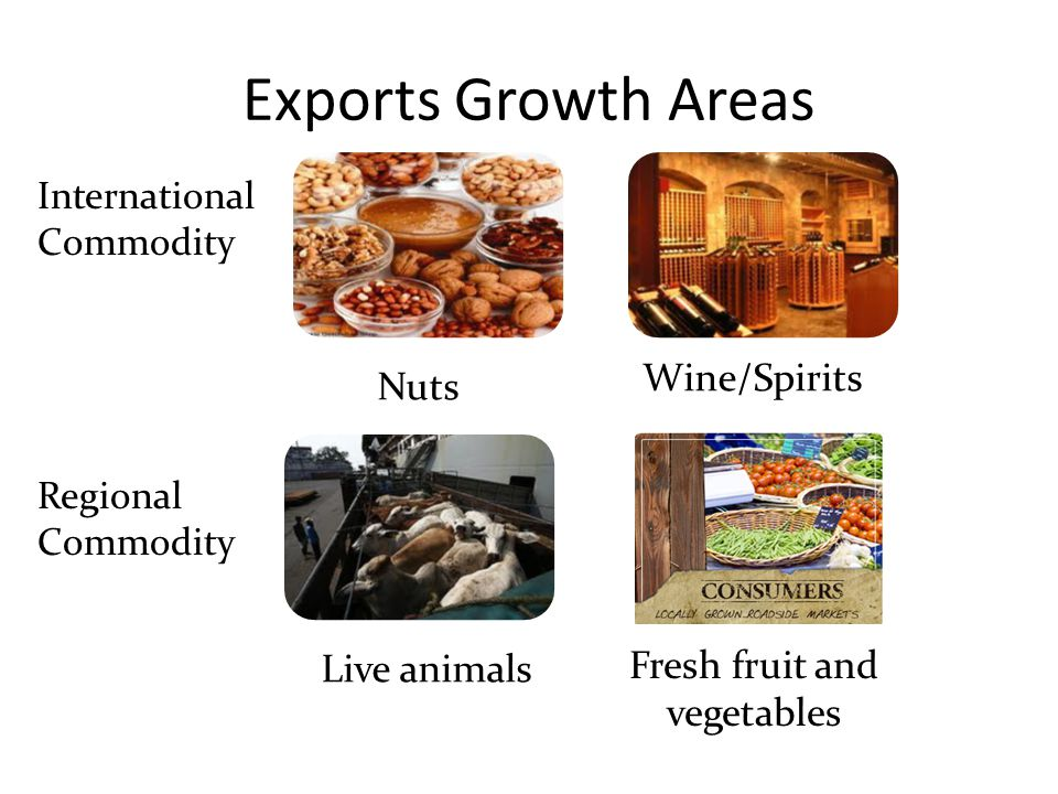 Exports Growth Areas Nuts Wine/Spirits Live animals Fresh fruit and vegetables International Commodity Regional Commodity