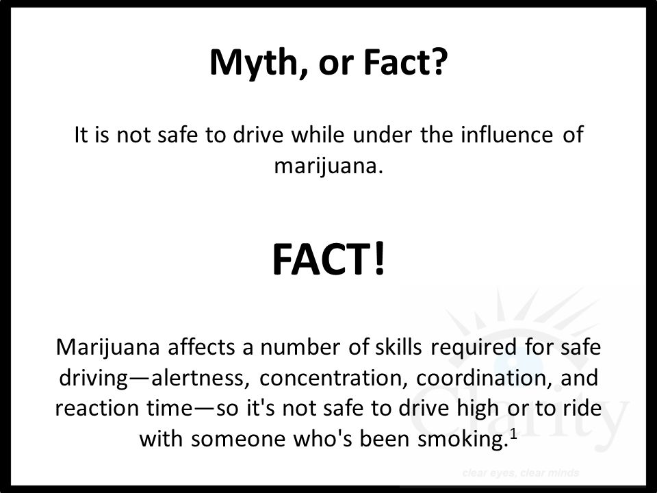 Myth, or Fact. It is not safe to drive while under the influence of marijuana.