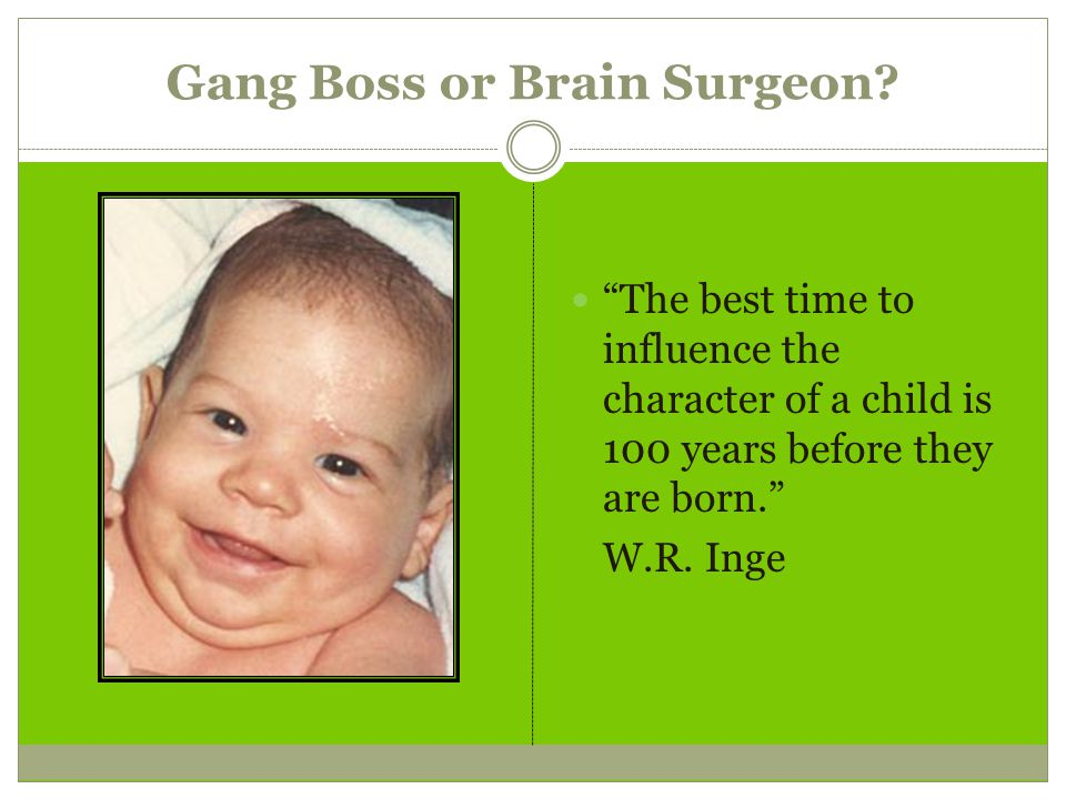 Gang Boss or Brain Surgeon.