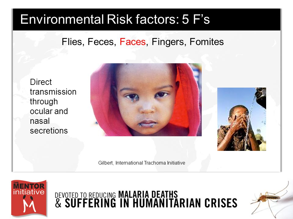 Flies, Feces, Faces, Fingers, Fomites Gilbert, International Trachoma Initiative Environmental Risk factors: 5 F's Direct transmission through ocular and nasal secretions