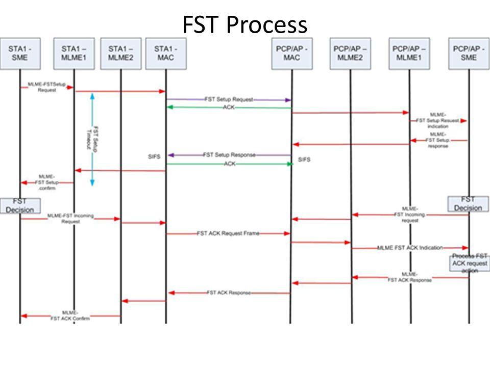 FST Process