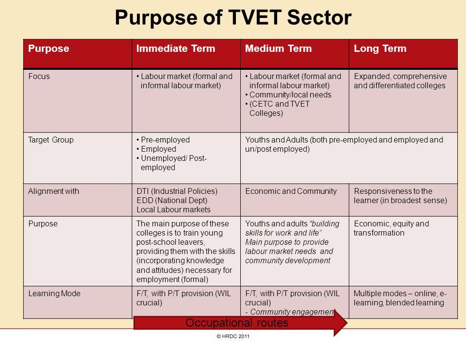 Purpose of TVET Sector PurposeImmediate TermMedium TermLong Term FocusLabour market (formal and informal labour market) Community/local needs (CETC an